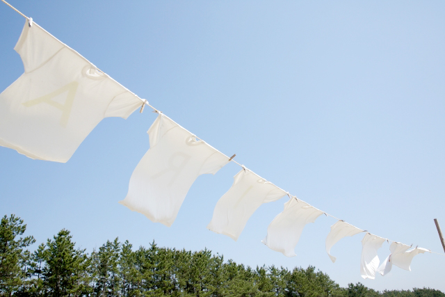 洗濯表示 変わった